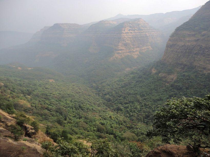 Tea Time in the Ghats. Maharashtra, India