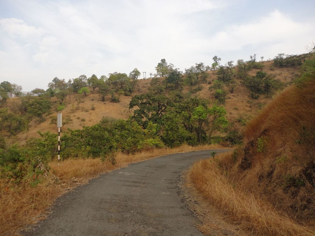Country Roads... Tapola, Maharashtra