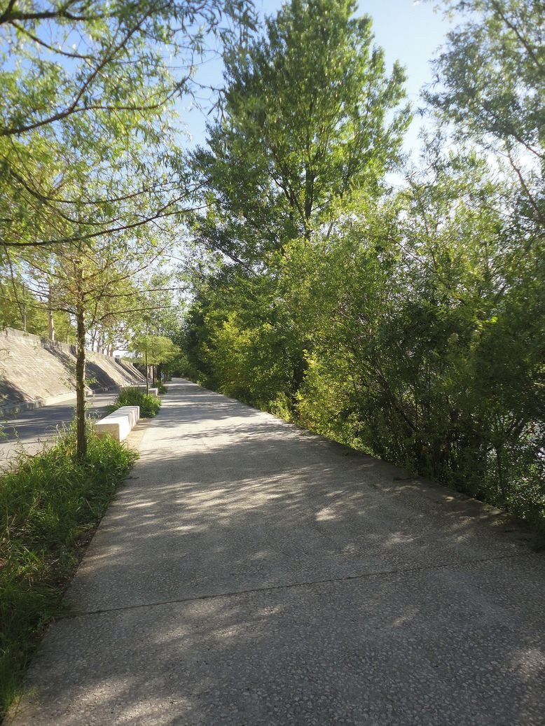 Riverside Promenade. River Rhône, Lyon, France