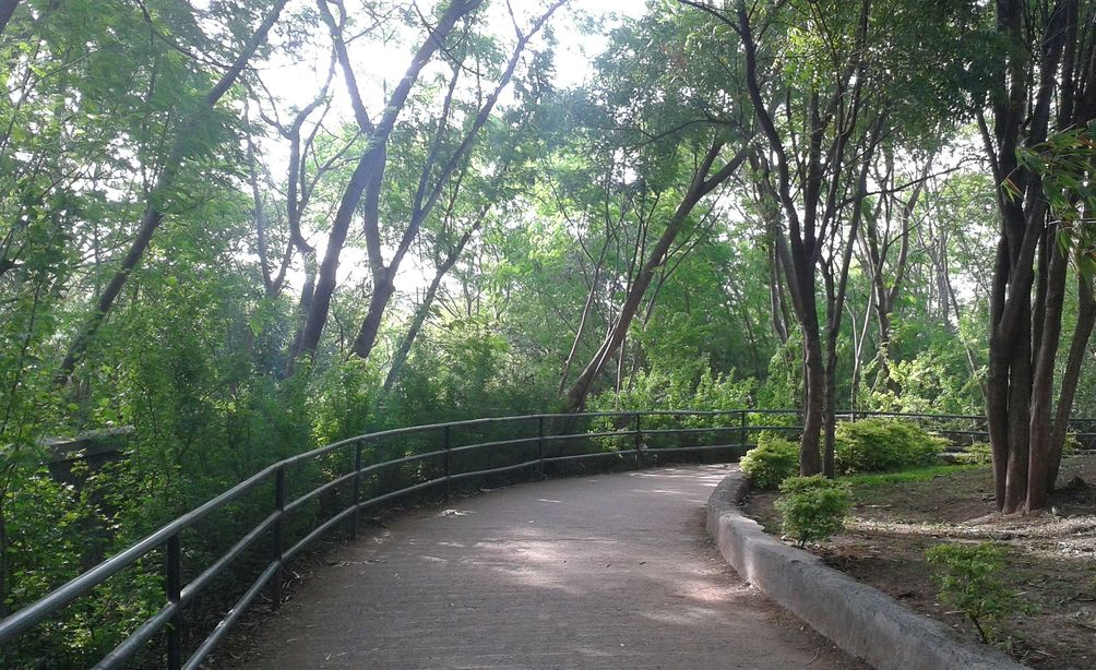 Take a walk. At Katraj Zoo, Pune, India