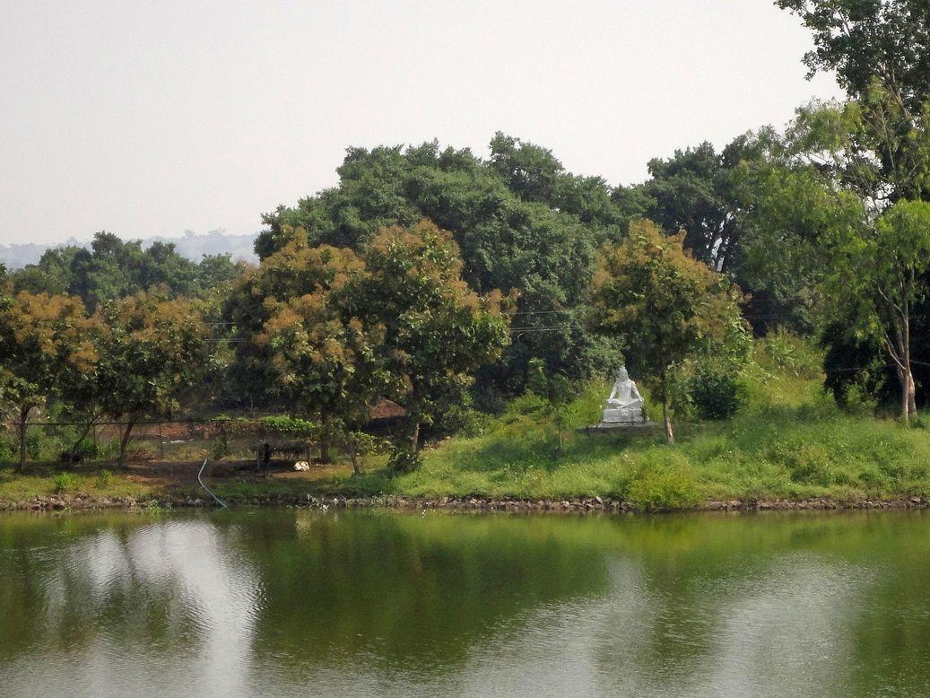 A pond. Mandu (Mandav), Madhya Pradesh.