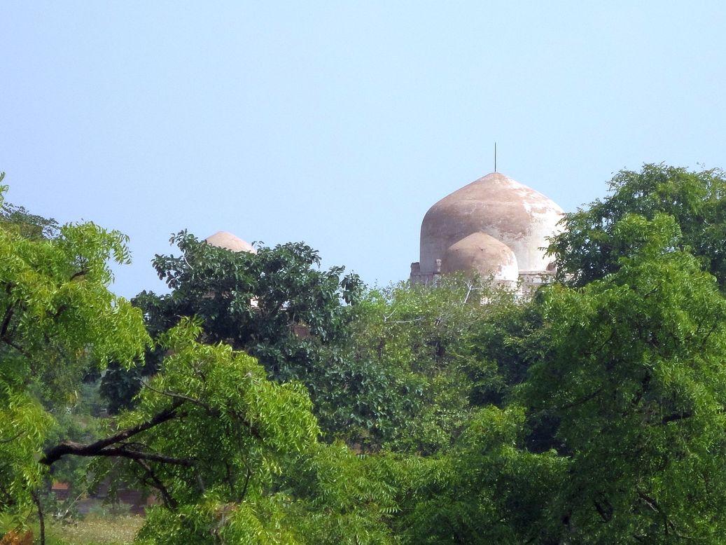 Hidden Domes. Mandu (Mandav), Madhya Pradesh.