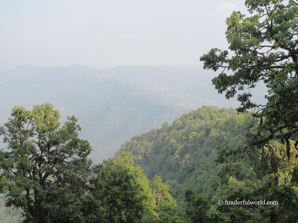 Binsar Wildlife Sanctuary, Uttarakhand.