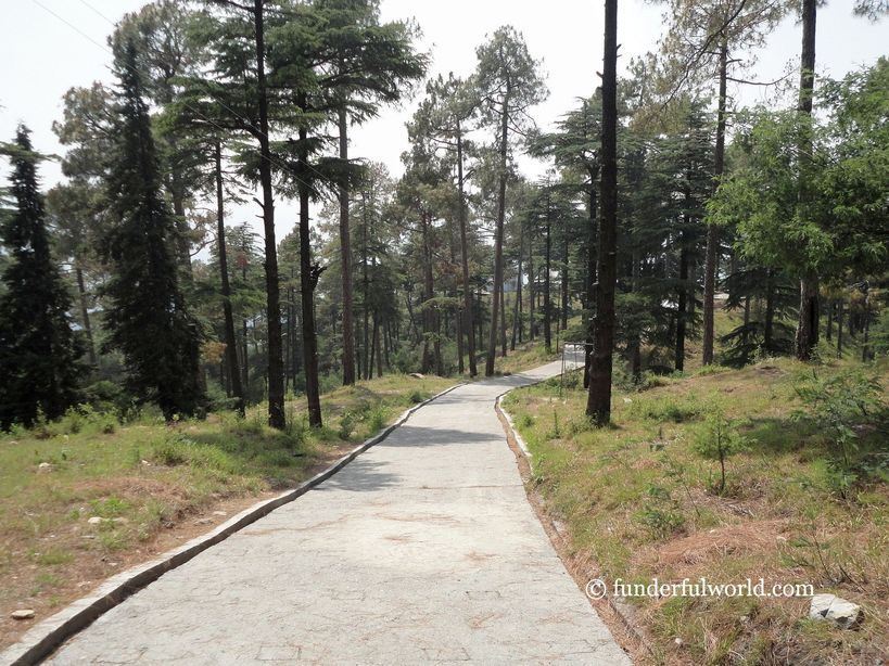 Just keep walking. Simtola Eco Park, Almora, Uttarakhand.